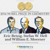 Nobel Kimya Ödülünü Kim Aldı ?