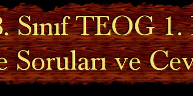 2014 TEOG 1. Dönem İngilizce Soruları ve Cevapları