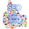Sosyal Medya ve Seo İlişkisi Nedir ?
