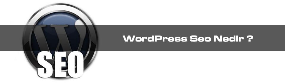 WordPress Seo Nedir